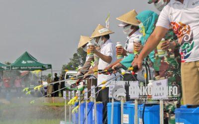 Bersama Forkompinda, Bupati Pimpin Penyemprotan Massal 20 Hektar Lahan Produktif